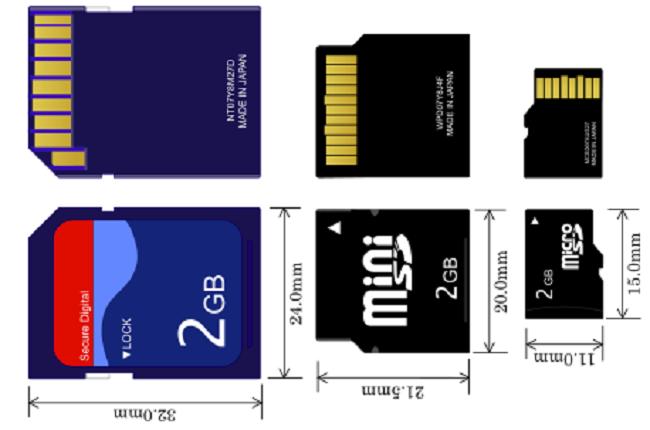 Sd Card Sizes >> Swapna Lekshmanan 11 11 Techmuzz