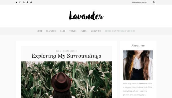 Free blog Theme