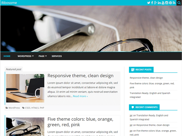 Ribosome Free WordPress Responsive Theme