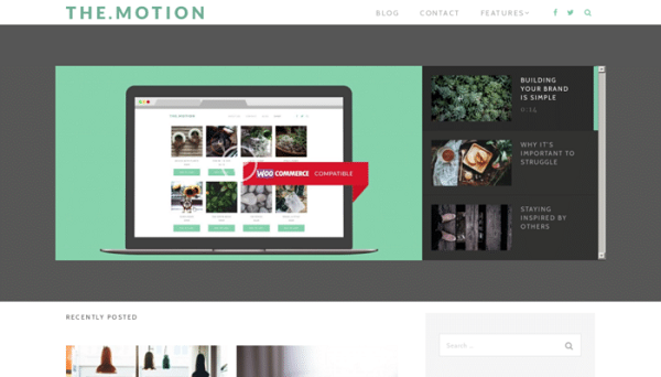 TheMotion Lite Free WordPress Responsive Theme