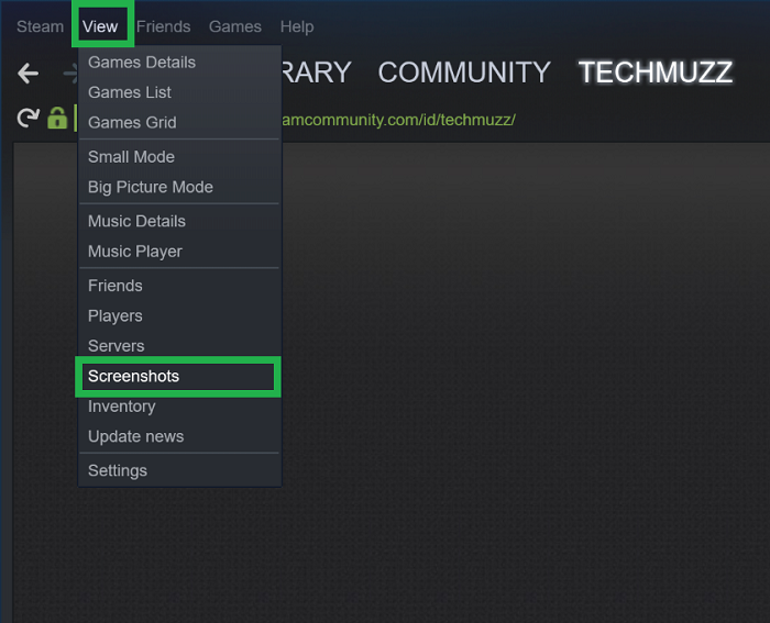 Steam screenshot option in view menu